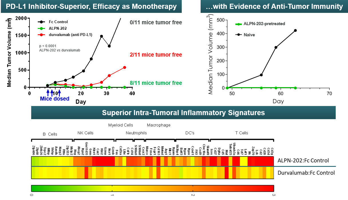 ALPN-202 preclinical data